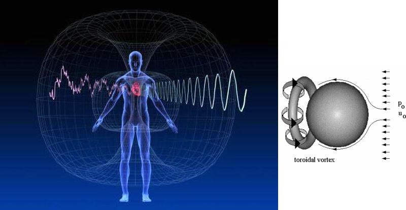 Vortex toroïdal base fondamental de la vie